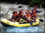group crafting sari propit